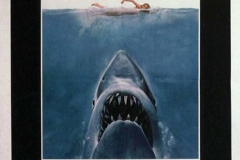 01-Jaws